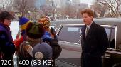 ������� ����� / The Mighty Ducks (DVDRip/1.45)
