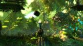 Trine 2 (PC/2011/ENG)