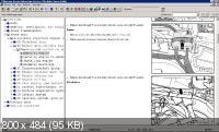 ELSA 3.91 VW  05.2011 (16.11.11) ������������ ������