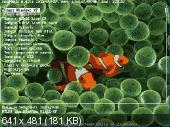 Taurum Usb 8 GB x86 (2011/RUS)