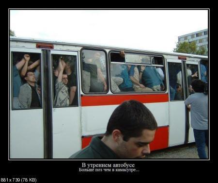 Свежая сборка демотиваторов от 03.12.2011