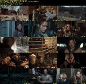 Do szpiku kości / Winter's Bone (2010) PL DVDRiP XViD