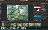 Corel PaintShop Pro X4 14.1.0.5 SP1 (2011/RUS)