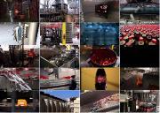 ����������. ����-���� / Megafactories. Coca Cola (2011) IPTVRip