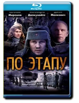 По этапу / In Tranzit (2008) BDRemux 1080p