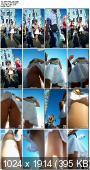 http://i30.fastpic.ru/thumb/2012/0218/1f/edc55c2e86ed325200c29b2a5a214b1f.jpeg