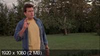Очень страшное кино 3 / Scary Movie 3 (2003) BDRip 1080p + HDTV 720p + HDRip