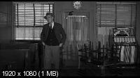 Анатомия убийства / Anatomy of a Murder (1959) BD Remux + BDRip 1080p / 720p