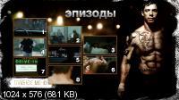 Воин / Warrior (2011) DVD9 + DVD5